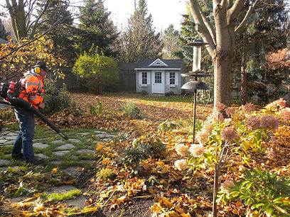 Kitchener Waterloo Fall Cleanup, Kitchener Waterloo Fall Property Maintenance