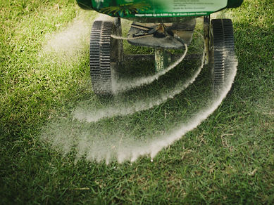 Kitchener Waterloo ferilizer lawn maintainance, lawn care