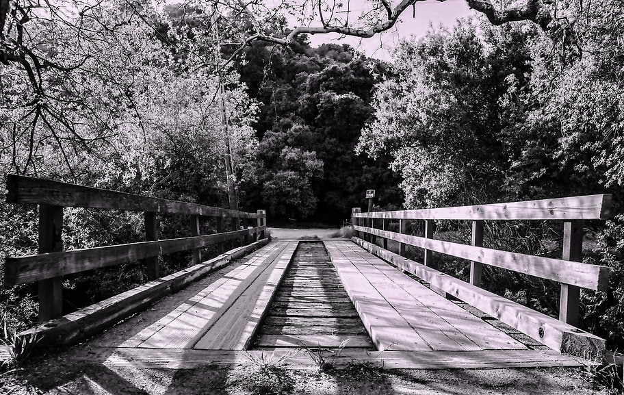 Toro Creek Bridge.jpg