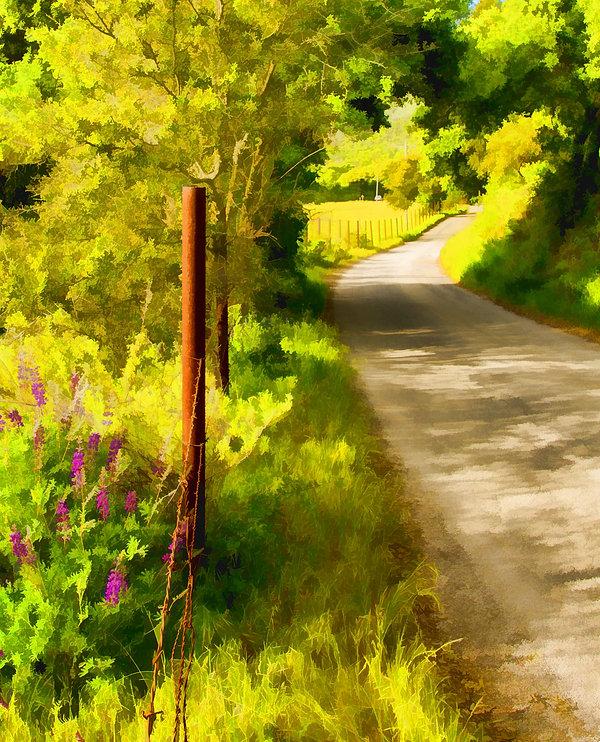 Toro Creek Rd.jpg