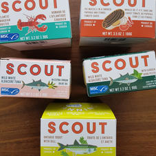 SCOUT CANNING