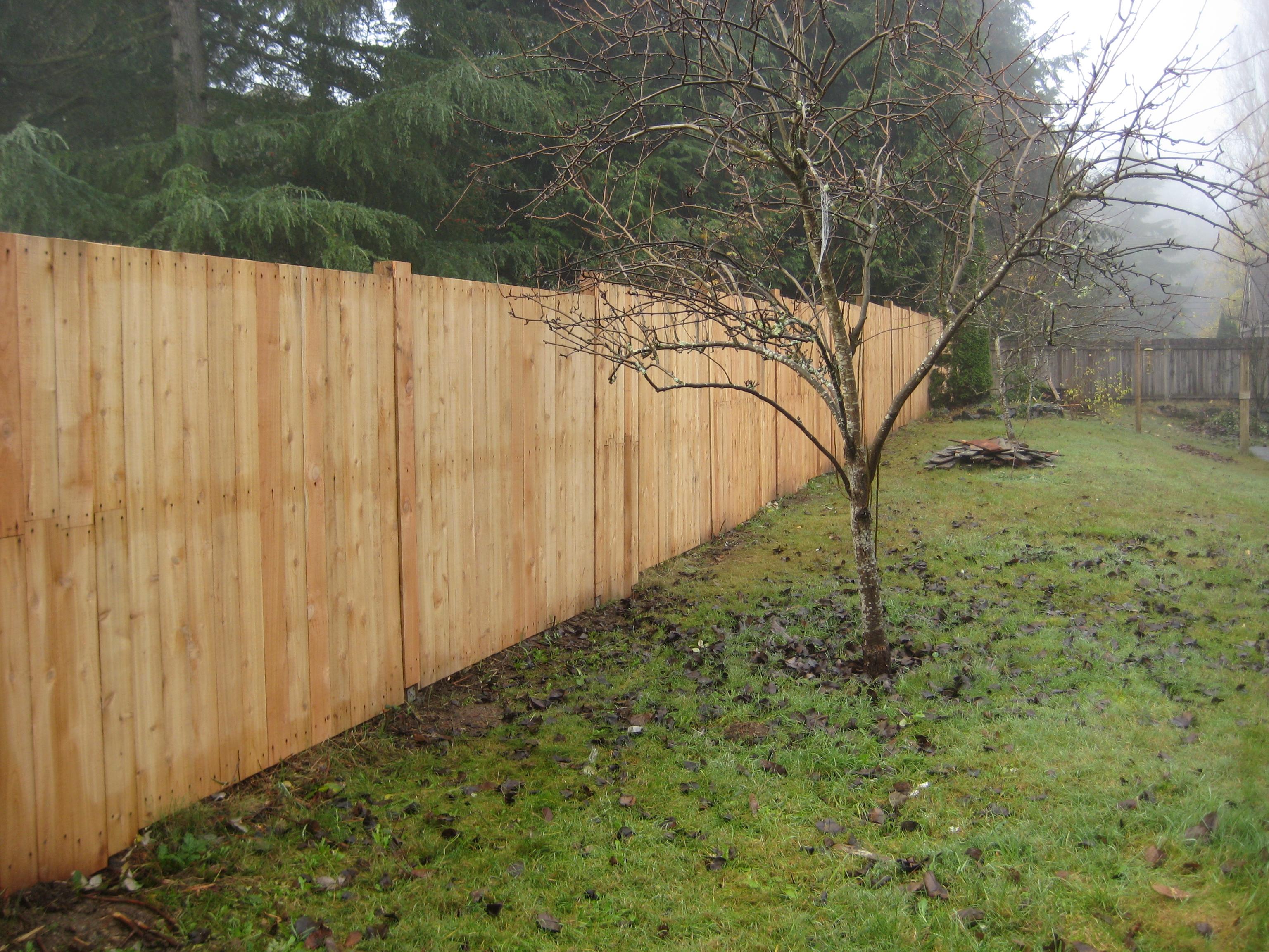 University Place fence 1(a)