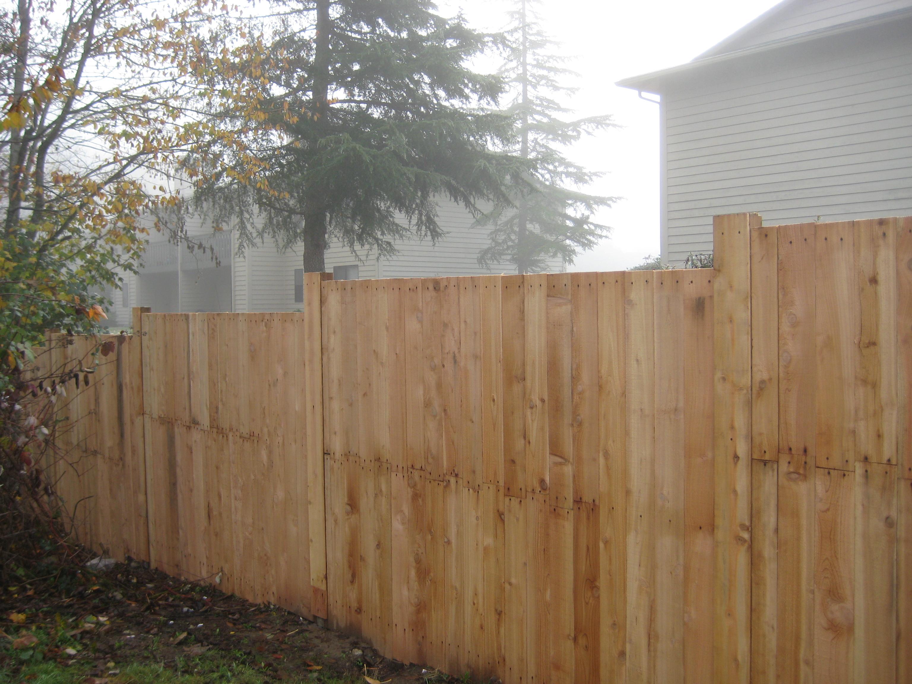 University Place fence 1(c)