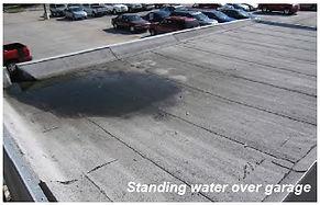 standing water.jpeg