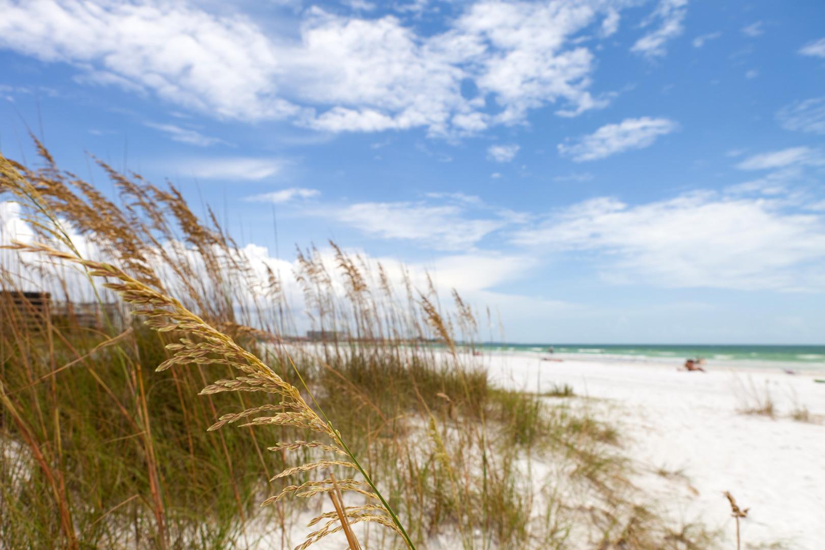 siesta-key-beach-is-located-on-the-gulf-