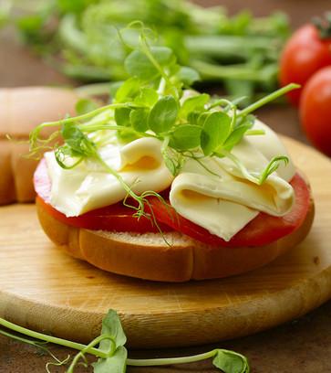 sandwich-with-cheese-23DV58Q.jpg