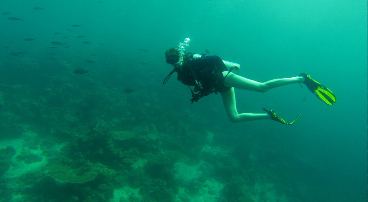 Scuba Diving in Djibouti