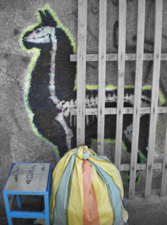 Street Art in Bolivia - Llama