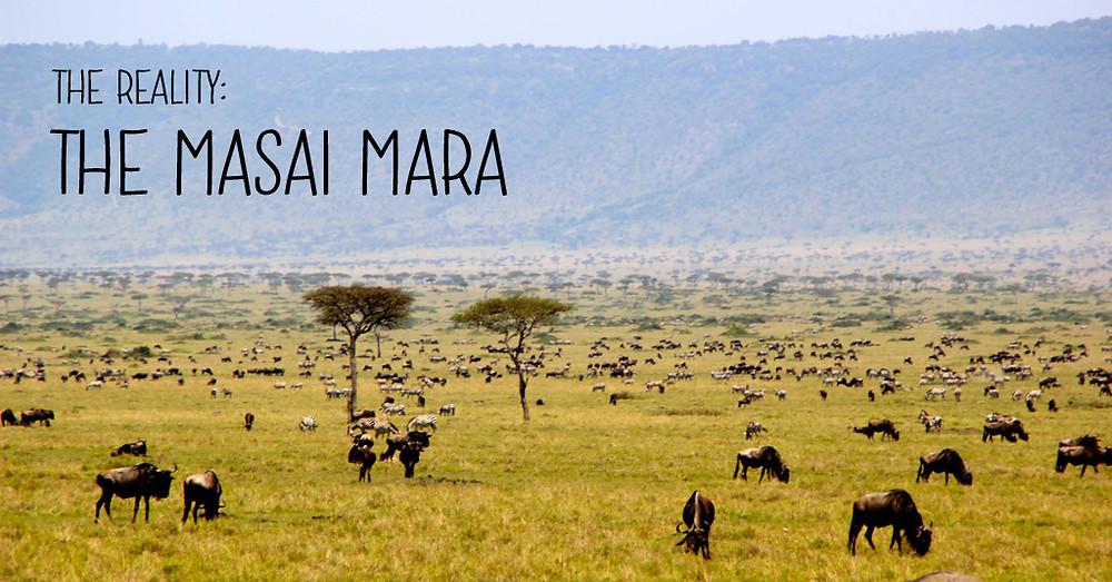 The Masai Mara, Kenya - vast, open plains