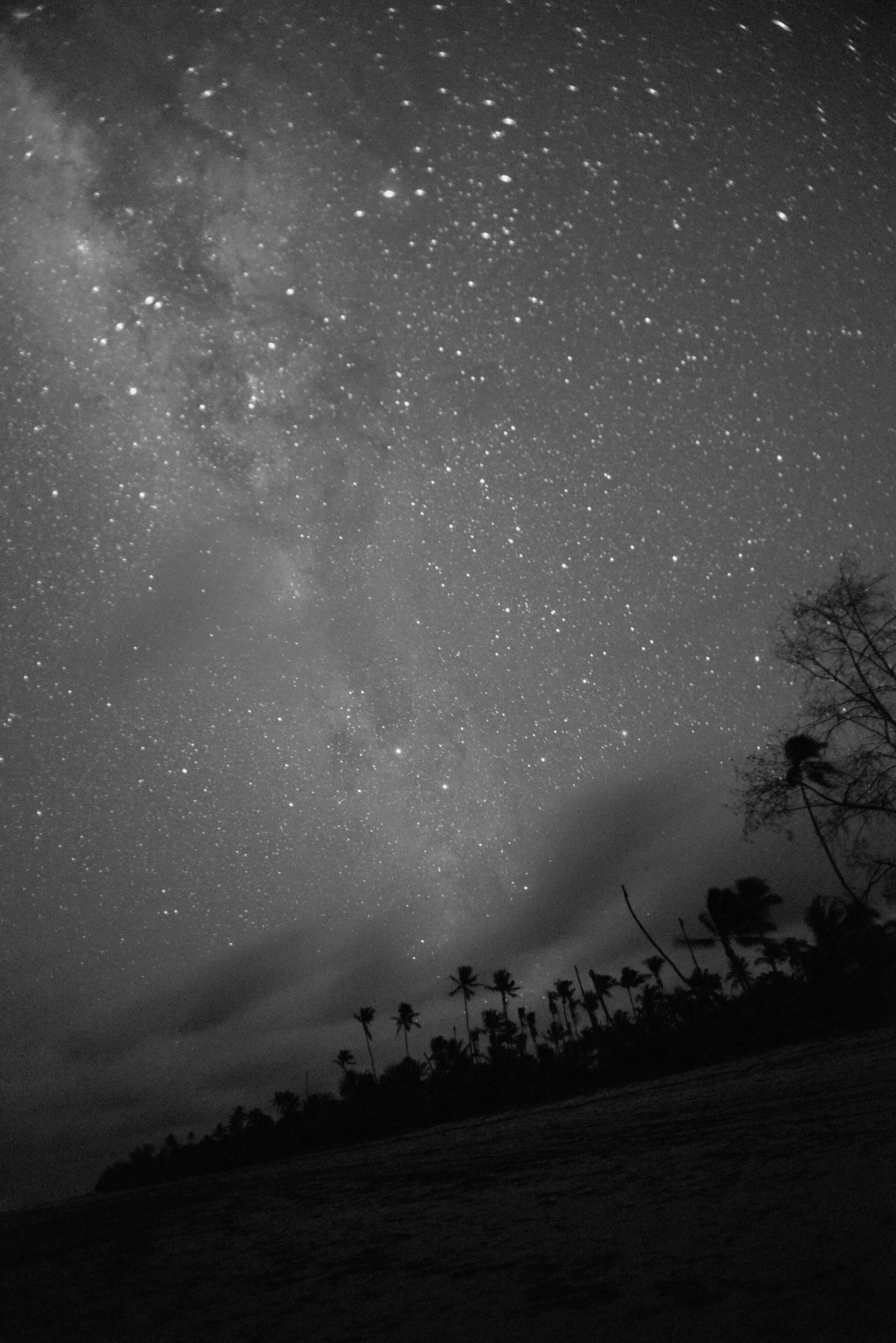 Tanzanian Stars
