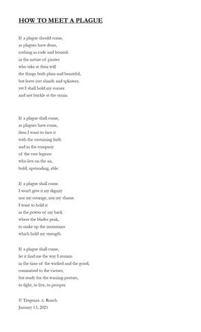 HOW TO MEET A PLAGUE by Tregenza Roach