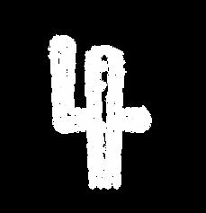 kaktus-05.png