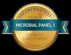 ESC Micro1-Spring2020-Canalysis.png