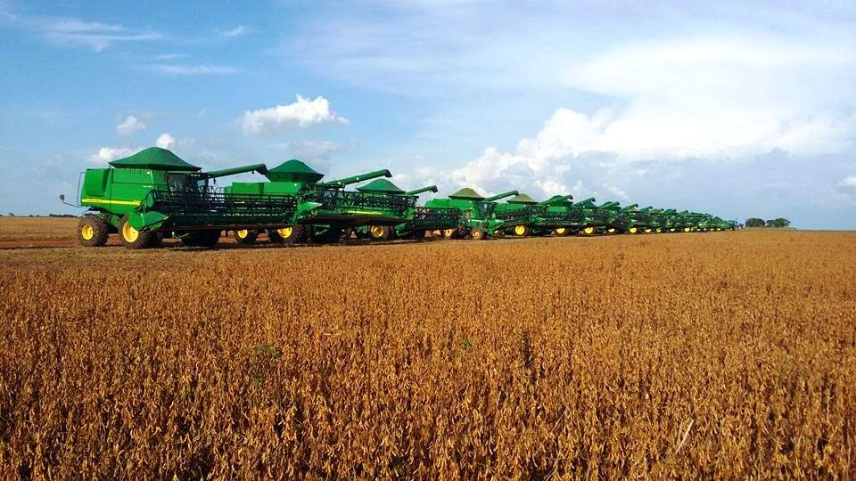 Colheita Fazenda Mutum