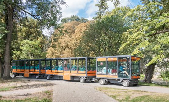 Zonnetrein in het park III