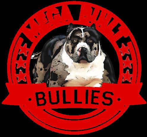Mega Built Bullies