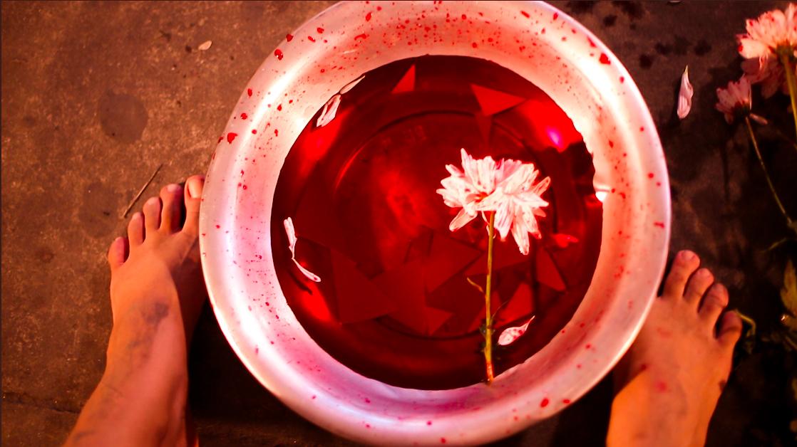 Ensaio Rosa de Sangue