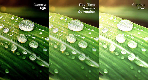 real-time-gamma-correction.jpg