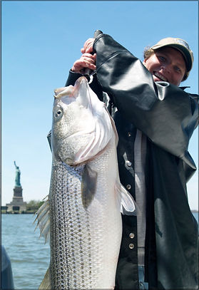 Image of Another Happy Client from Fin Chaser Charters with a Statue of Liberty Striper
