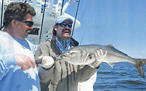 Image of Capt. Frank Crescitelli & Hall of Famer Wade Boggs with World Record Blue Fish