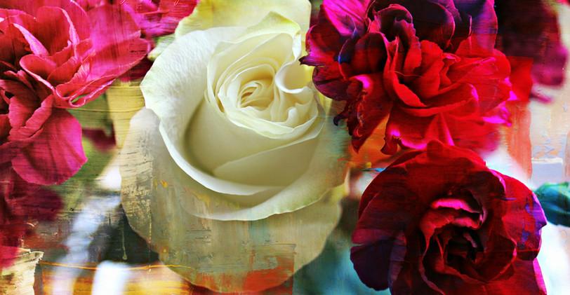 rose edited 8_wm.jpg