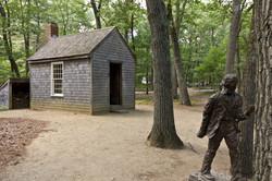 A Thoreau back-to-nature design