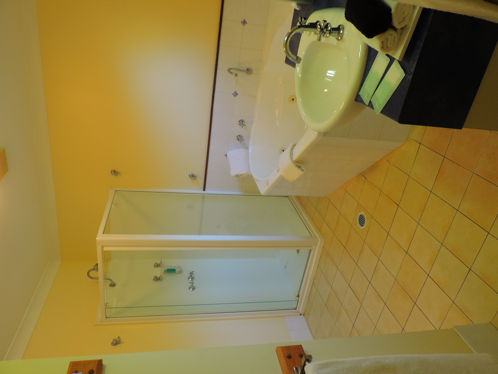 Deluxe Unit bathroom