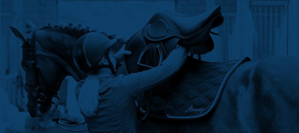 saddle_B&W blue.jpg