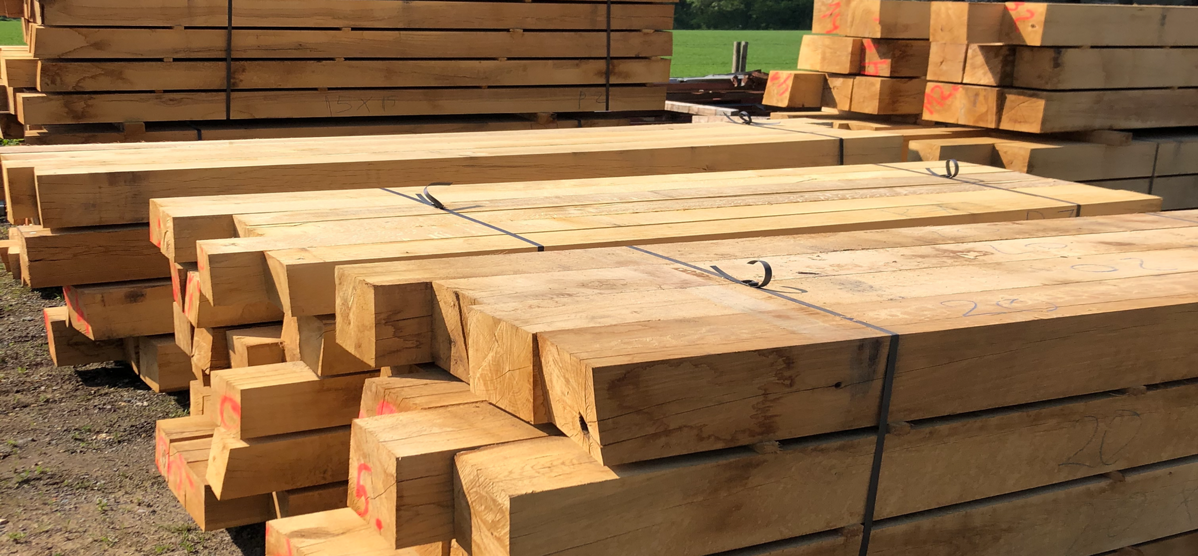 Hampshire Green Oak Structural Beams, Sleepers for garden landscaping.png