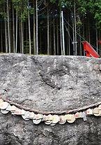 ご神体の当銭岩様.jpg