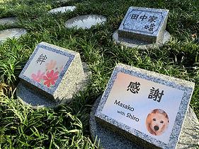 樹木葬の墓標