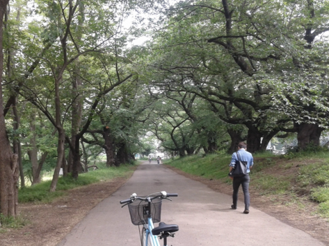 Cycling – a Great Way to Explore Tokyo