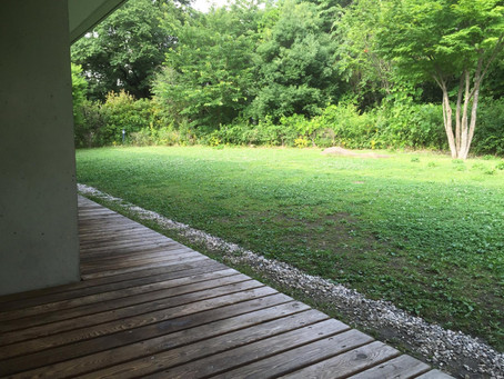 Secret Relaxing Places on Komaba Campus