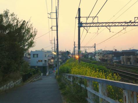 Finally, Summer in Japan