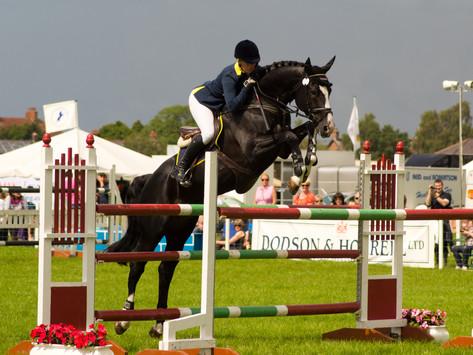 Equestrian: What Horses Teach Us