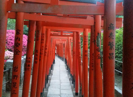 The Nooks and Crannies of Tokyo