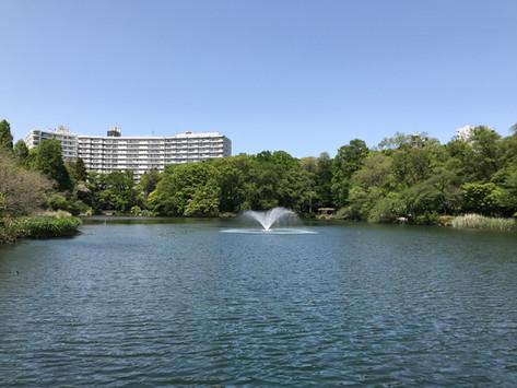 Living History of Inokashira Park