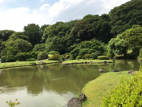 The Botanical Garden of UTokyo