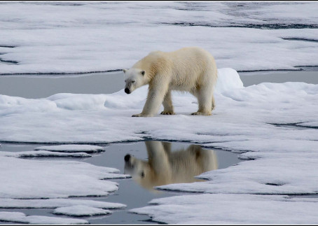 Global Warming: Global Warning for All