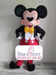 Mickey-.jpg
