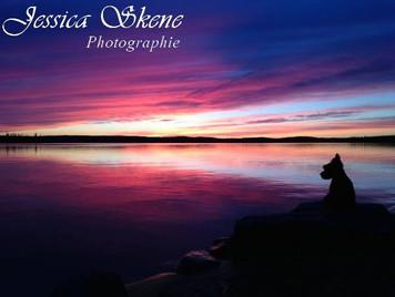 Hippi-que & Compagnons Jessica Skene Photographie Cosmo Coucher de soleil