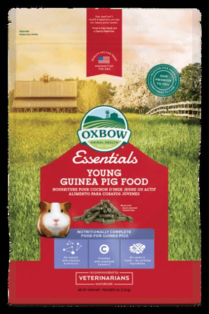 Nourriture pour Jeune cochon d'inde Oxbow