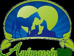 Animasoin Bio Fournisseur Grooming Toilettage