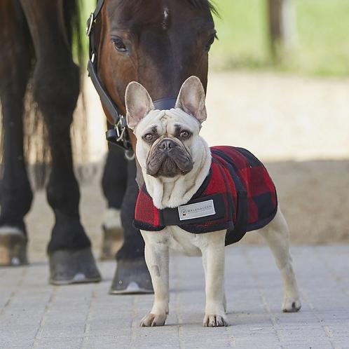 Manteau pour chien Lumberjack de Waldhausen