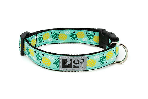 RC pets collier ananas
