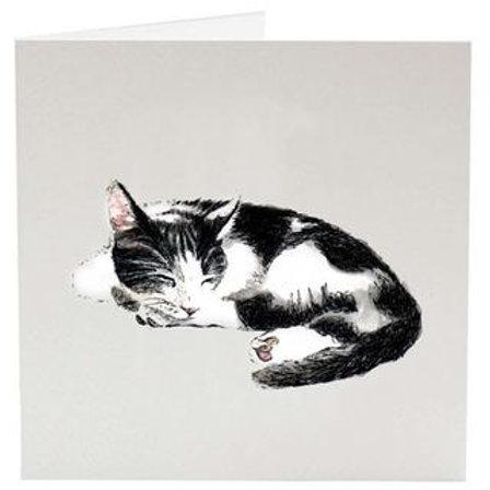 Carte de souhait chat de Sarah Vickery