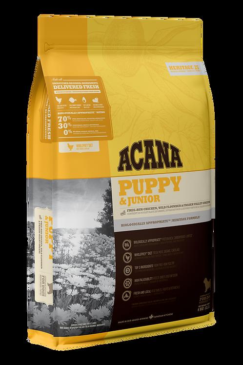 Acana Puppy & Jr