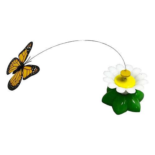Chasse papillon