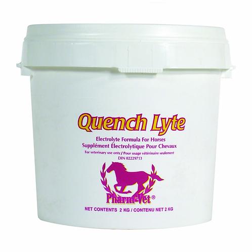 Supplément électrolytique Quench Lyte de DVL