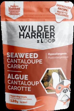 Bouchée d'algue, cantaloup et carotte Wilder Harrier